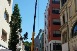 Entreprise construction bois : centre médical, extension ossature bois, Luxembourg - Martin charpentes