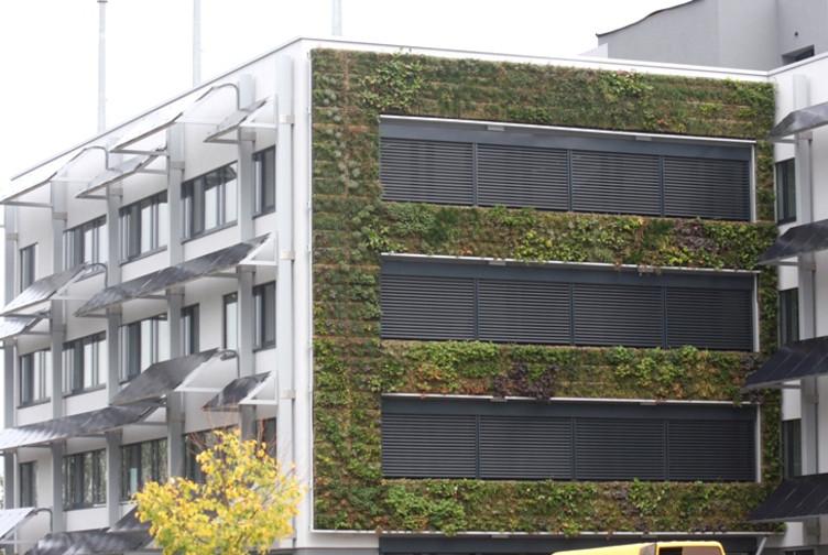 Vue sur le mur végétalisé